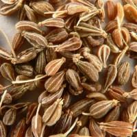 Душистые семена гачуша