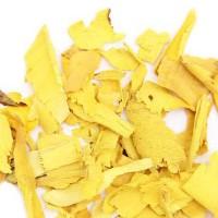 Неожиданно жёлтый корень колючего куста