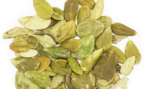 Высушенные листья должны сохранить цвет и аромат