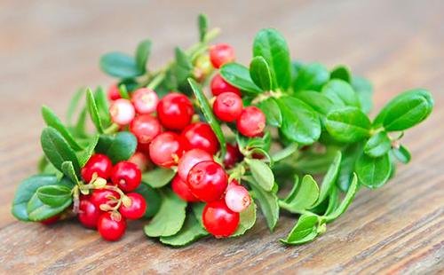 Смесь ягод и листьев лежит на столе