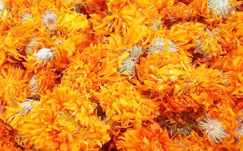 Сухие соцветия ноготков не теряют окраски