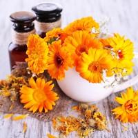 Цветы в белом чайнике и готовый настой