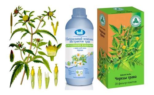 Целебная трава для малышей в разных видах