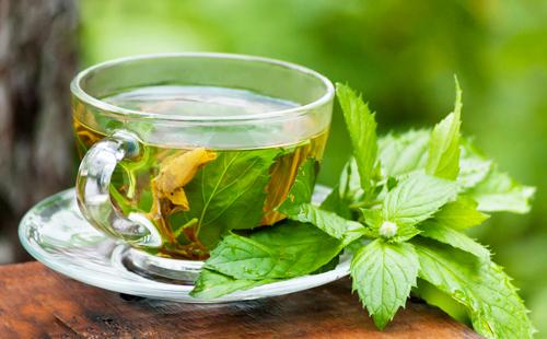Свежесорванные листья и чашка освежающего чаю