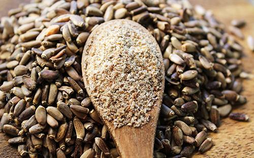 Семена расторопши целые и мука в деревянной ложке