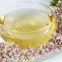 Золотистый чай и розовые цветы