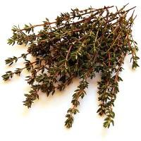 Пучок сушёной травы для заварки