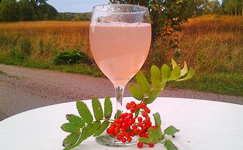 Свежевыжатый сок ягод скорушины хорошо пить на свежем воздухе из бокала на высокой ножке
