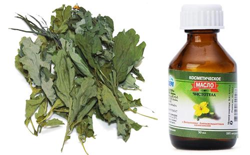 Сушёные листья чистотела и изготовленное из них масло в склянке