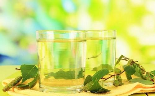 Зелёные веточки рядом с двумя стаканами прозрачной жидкости