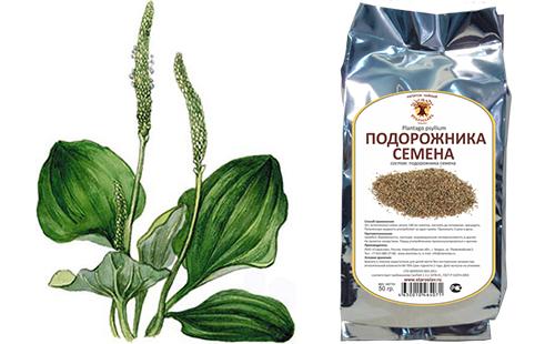 Семена семижильного попутчика в упаковке