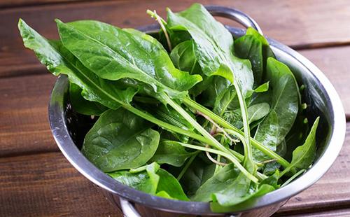 Свежие листья в алюминиевой посуде