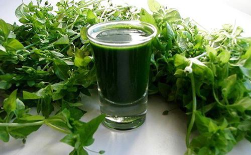 Травяной сок в стаканчике