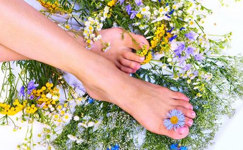 Красивые женские ноги среди целебных трав