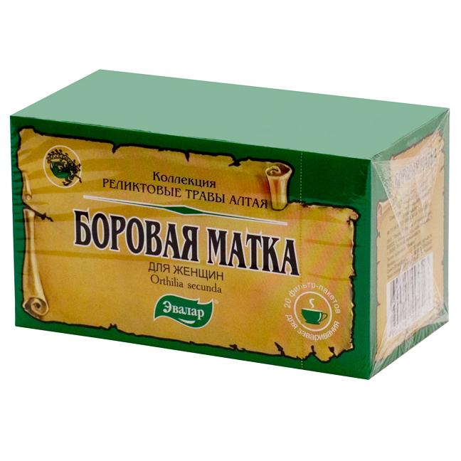 Фармакологические свойства чая матка боровая и применение