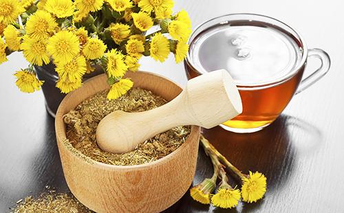 Сушёный белокопытник в ступке, букет и чашка отвара
