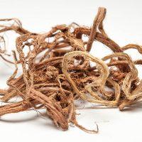 Высушенный белошный корень