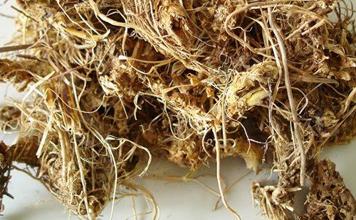 Перепутанные корешки воробьиной травы