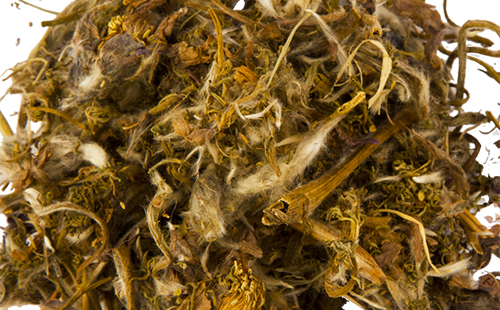 Сушёные стебельки сон-травы