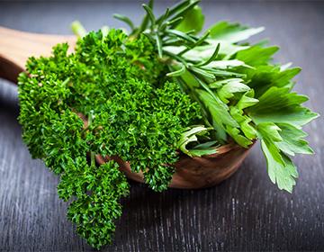 Семена петрушки лечебные свойства - Простатит