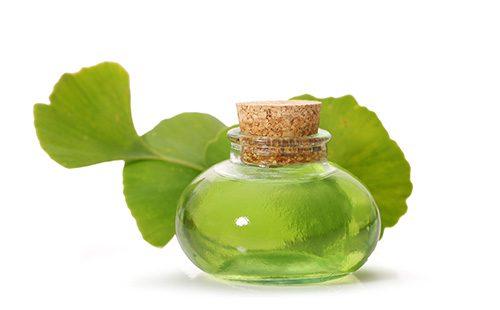 Настойка из листьев гинко билоба