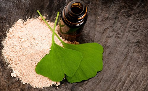 Порошок и листья гинко билоба