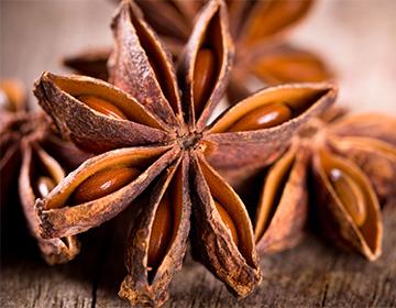 Бадьян  полезные свойства и противопоказания чай отличие от аниса