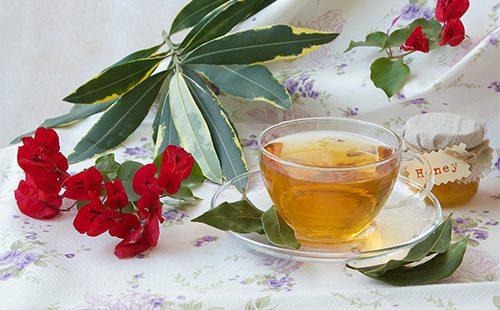 Чай из лавра