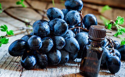 Синий виноград и масло из его косточек