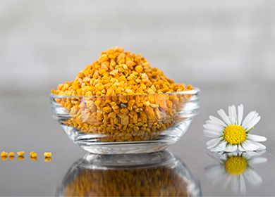 Перга пчелиная для женщин: польза и вред, народные рецепты, противопоказания