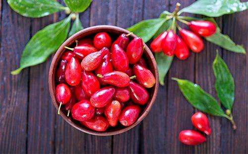 Красные ягоды кизила