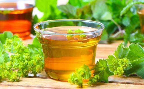 Травяной чай с манжетки