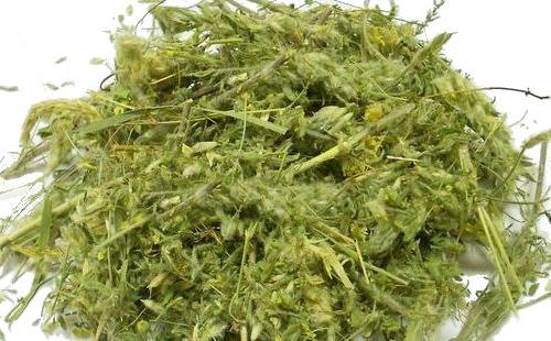 Сушёная трава астрагал