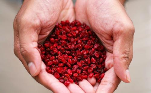 Полная горсть красных полезных ягод