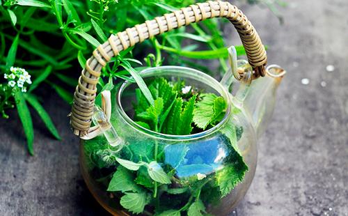 Красивый чайник с плетёной ручкой, полный отвара из лесной мяты