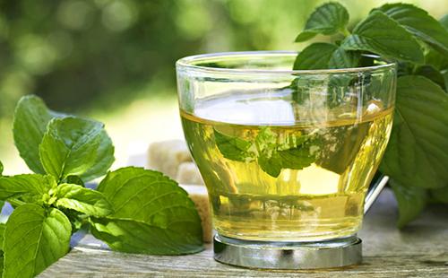 Бодрящий напиток из свежих листьев