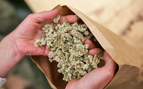 Руки достают из бумажного пакета сухие цветы