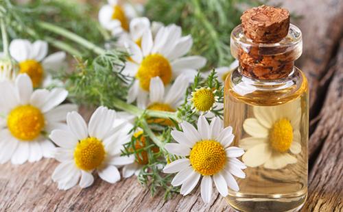 Прозрачное масло из полевых цветов