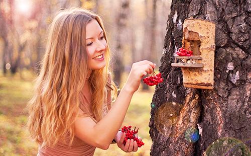 Девушка кормит ягодами птиц в солнечном лесу