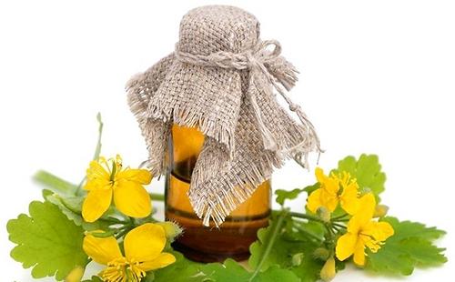 Бутылочка с завязанным горлышком стоит среди жёлтых цветов