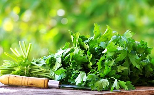 Свежая душистая зелень на разделочной доске