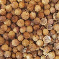 Маленькие коричневые плоды коляндры