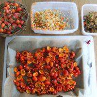 Готовые к употреблению сушёные плоды