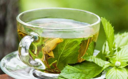 Отвар в чашке из листьев жаливы