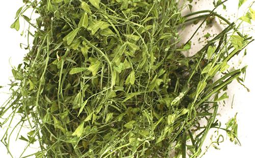 Сушёная мочальная трава