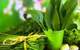 Барбарис: полезные свойства и применение в народной медицине