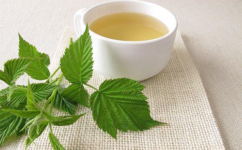 Чай из малиновых листьев