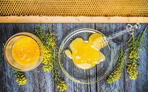Мед в пиалах и веточки рапса